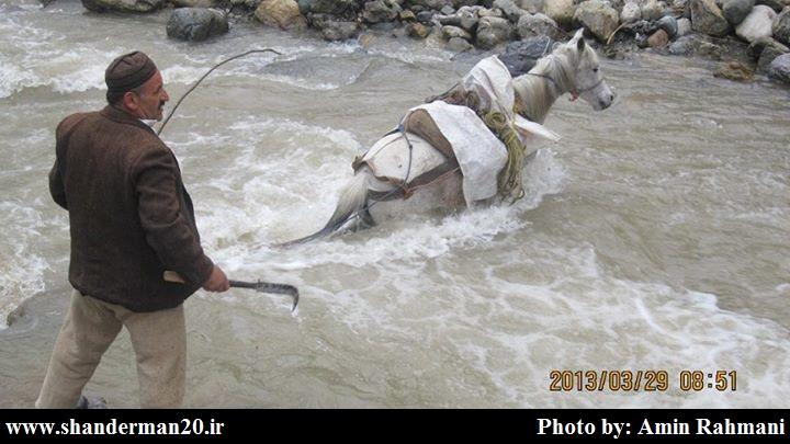 اسب و رودخانه خروشان