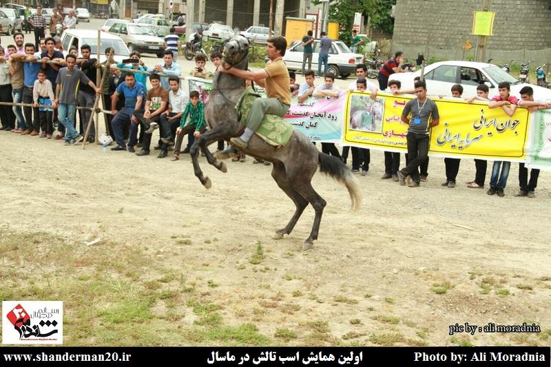 اولین همایس اسب تالش- ۹ خرداد ۱۳۹۴ (۱۷)