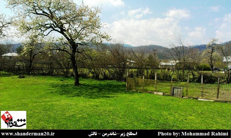 روستای اسطلخ زیر-شاندرمن (۴)
