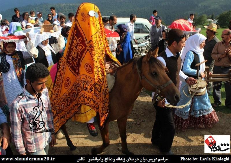 عروس بران در ییلاق زندانه و صالح پره سر (۰۵)
