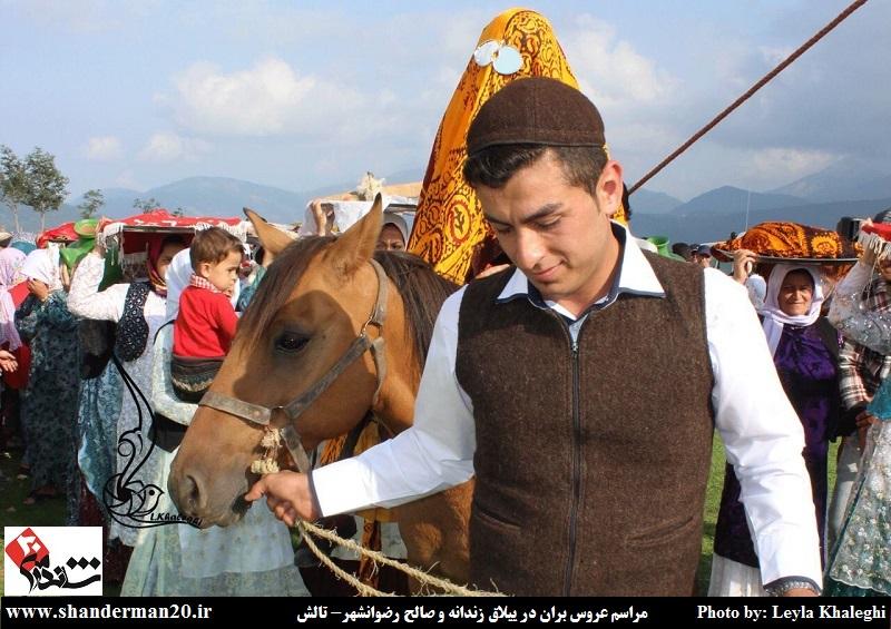 عروس بران در ییلاق زندانه و صالح پره سر (۰۸)