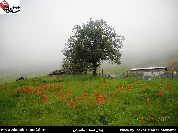 اوماقه محله در ییلاق دشته شاندرمن-سید مومن منفرد