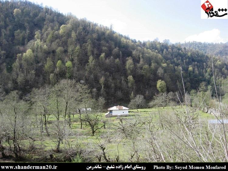 روستای امامزاده شفیع شاندرمن - سید مومن منفرد