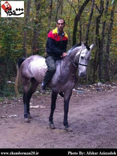 هفتمین دوره مسابقات کورس سوارکاری شاندرمن - شاندرمن۲۰ (۳۳)