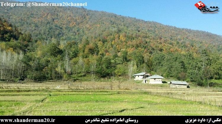 روستای امامزاده شفیع شاندرمن - داوود عزیزی - شاندرمن ۲۰