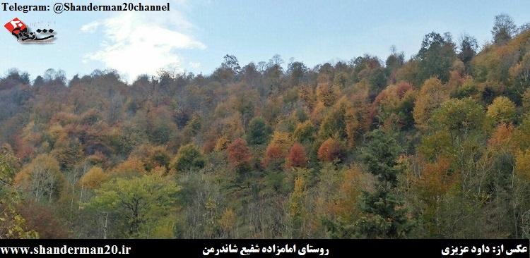 روستای امامزاده شفیع شاندرمن ۲- داوود عزیزی - شاندرمن ۲۰
