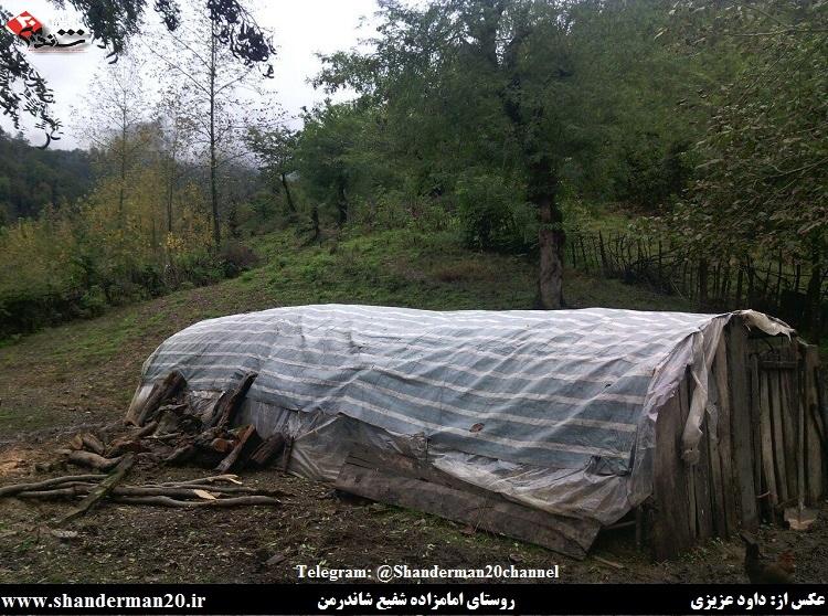 روستای امامزاده شفیع شاندرمن ۳- داوود عزیزی - شاندرمن ۲۰