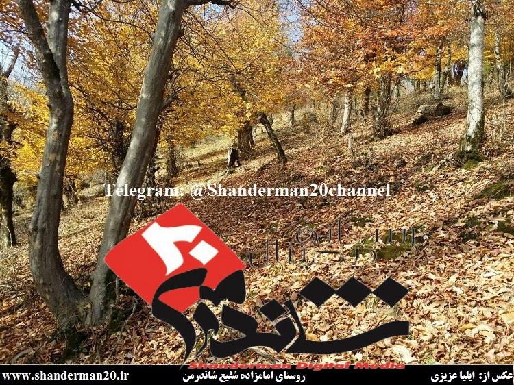 روستای امامزاده شفیع شاندرمن۲ - ایلیا عزیزی - شاندرمن ۲۰
