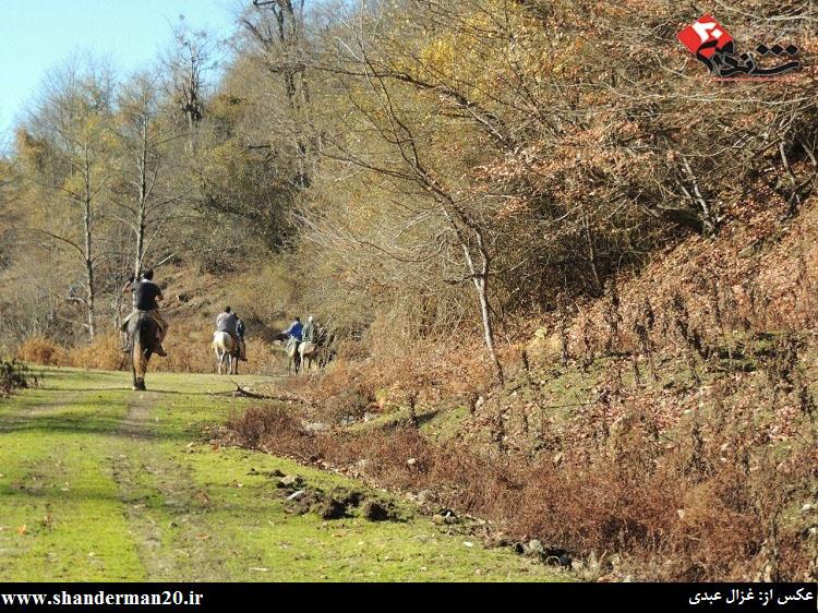 گشت زنی سوارکاران شاندرمنی در یک روز زمستانی - غزال عبدی - شاندرمن۲۰ (۱۲)