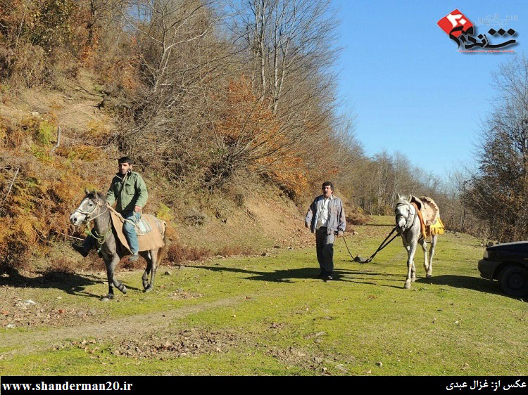 گشت زنی سوارکاران شاندرمنی در یک روز زمستانی - غزال عبدی - شاندرمن۲۰ (۶)