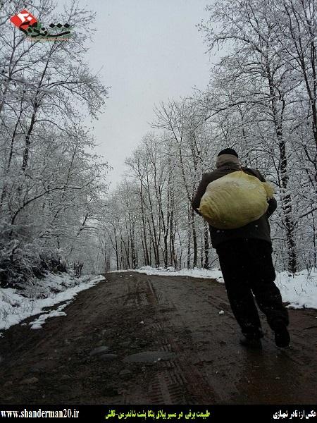 طبیعت برفی در مسیر ییلاق پنگاپشت شاندرمن - تالش - شاندرمن۲۰ (۲)