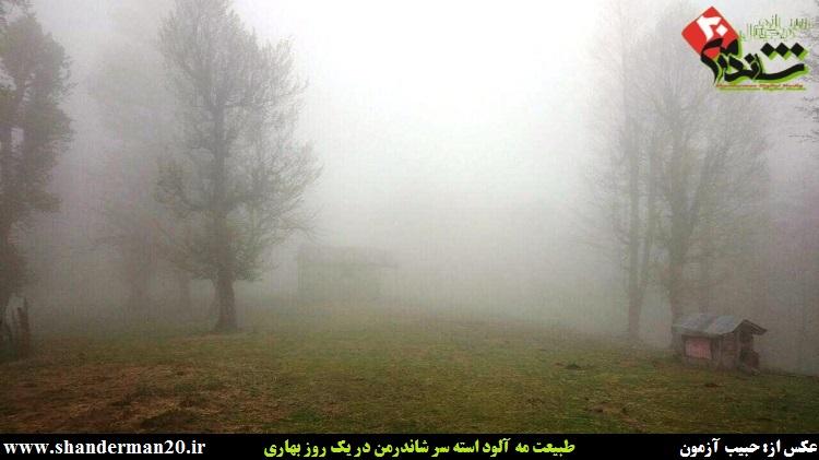 طبیعت مه آلود استه سر- شاندرمن- تالش - شاندرمن۲۰ (۱)