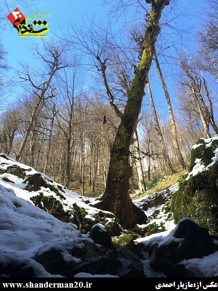 گزارش سفر به غار آویشو - شاندرمن۲۰ (۲۱)