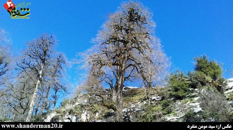 گزارش سفر به غار آویشو - شاندرمن۲۰ (۳۶)