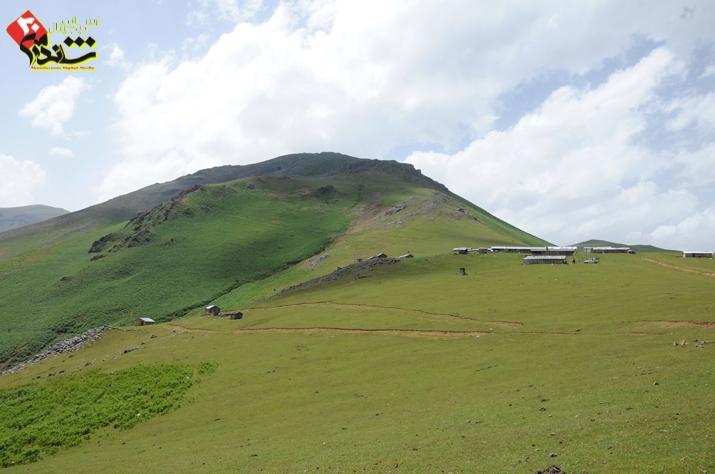 Sifi-Salman-Ranjbar-1