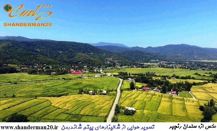 تصویر هوایی از شالیزارهای شاندرمن (۱۱)