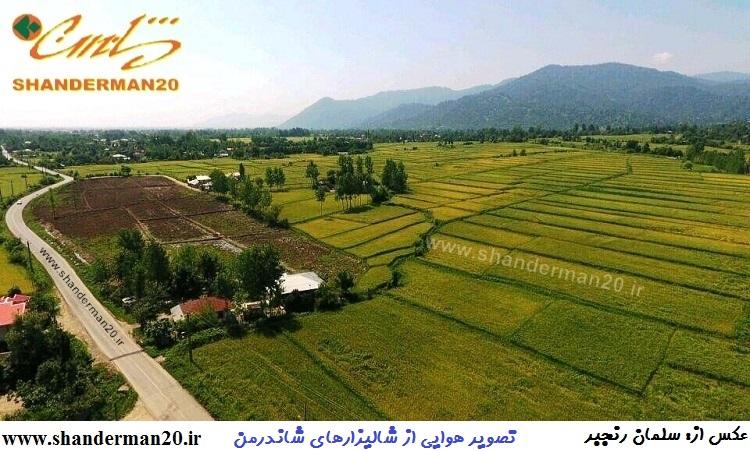 تصویر هوایی از شالیزارهای شاندرمن (۹)