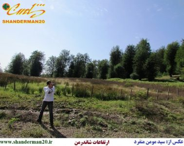 ارتفاعات-شاندرمن-تالش-سید-مومن-منفرد