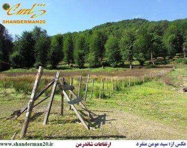 ارتفاعات شاندرمن-تالش - سید مومن منفرد
