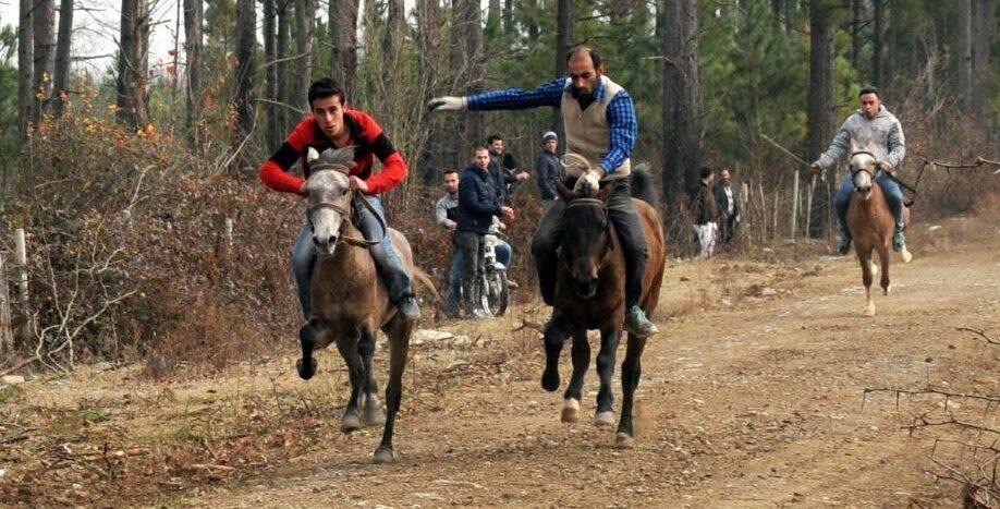 سیزدهمین دوره مسابقات سوارکاری شاندرمن برگزار شد.
