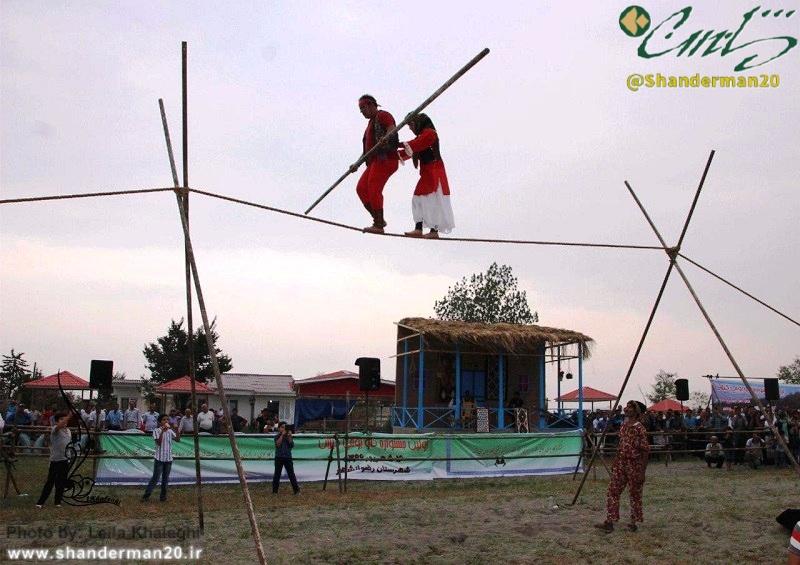 نخستین جشنواره گاو بومی گیلان
