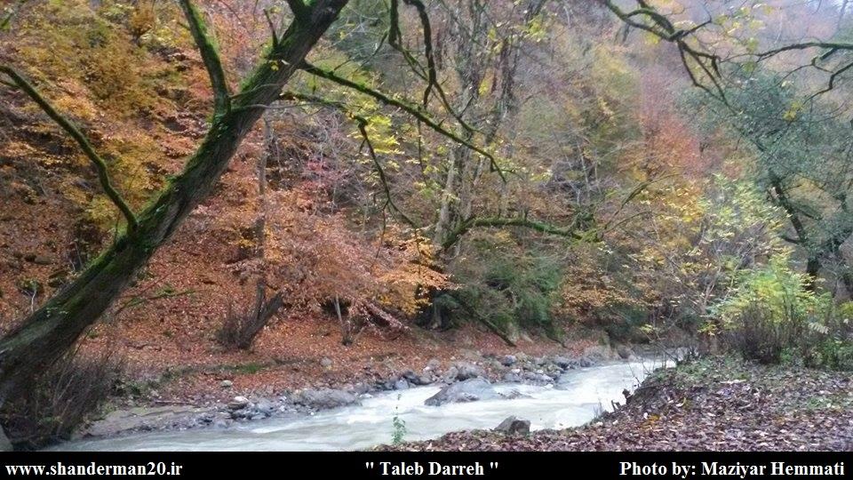 پاییز زیبای طالب دره شاندرمن