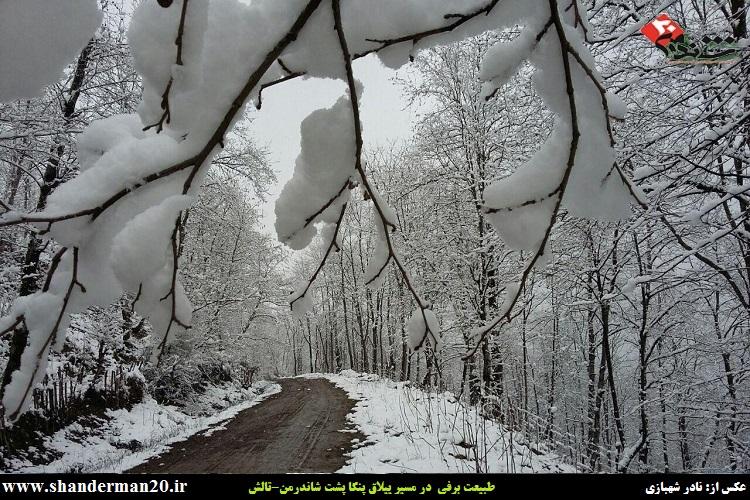 تصاویری از طبیعت برفی در مسیر ییلاق پنگا پشت شاندرمن-تالش