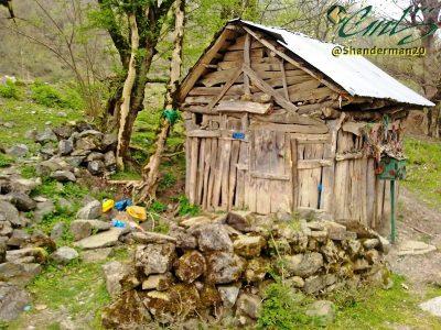 تربت گولگول در مسیر ییلاقی شاندرمن