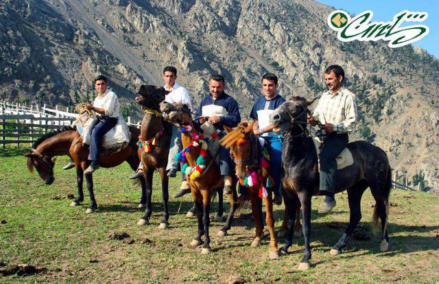 جايگاه اسب و سواركارى در نزد تالشان دلاور و چابك سوار